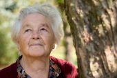 Geförderte Pflegetagegeldversicherung