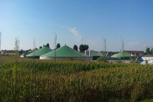 Die Biogasanlagenversicherung