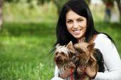 Welche Hunde versichert werden sollten