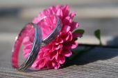 Wenn die Hochzeitsglocken läuten - Versicherungsschutz für zwei