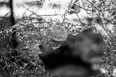 Haftpflichtversicherung – aber nicht irgendeine