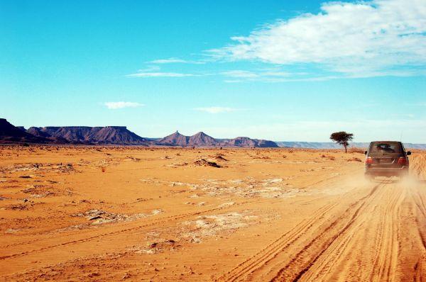 Reiselust statt Reisefrust